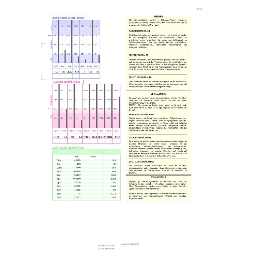 Stoffwechselanalyse, Labormusterbefund Seite 2