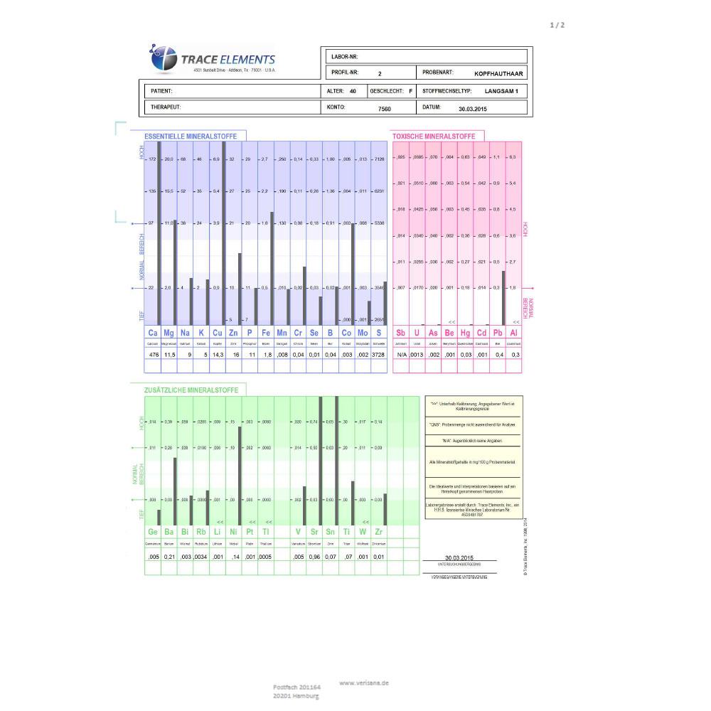 Stoffwechselanalyse, Labormusterbefund Seite 1